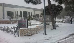 Carpe Diem with snow